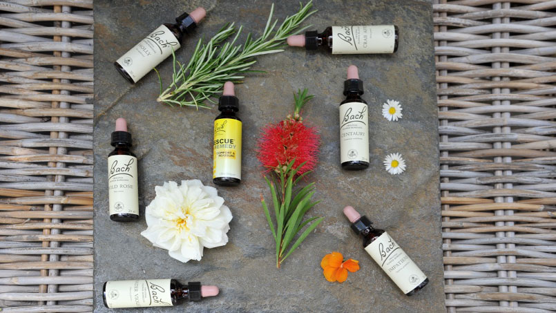 Bach Flower Remedy Treatment